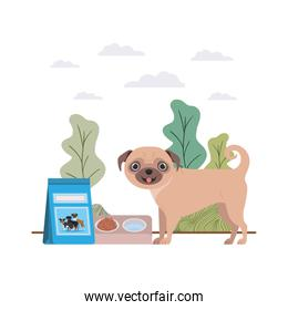 dog with bowl and pet food on landscape