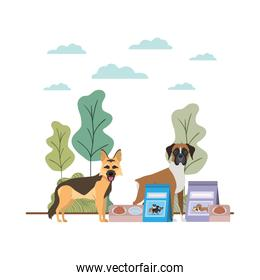 dogs with bowl and pet food on landscape