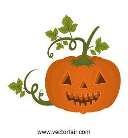 halloween pumpkin with face and leafs