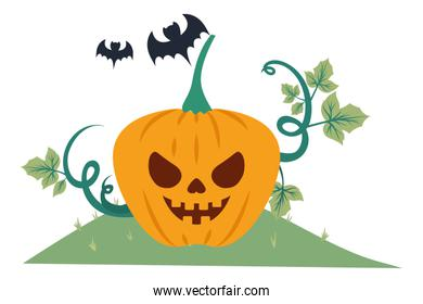 halloween pumpkin with happy face in the field and bats flying