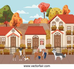 young man with cute dogs mascots in the autumn city scene