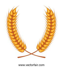 wheat spikes crown decoration isolated icon