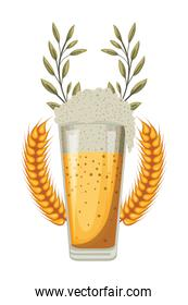 beer glass with wheat spikes oktoberfest celebration icon