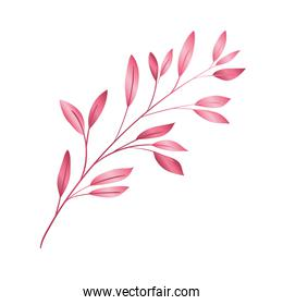 branch with leafs pink decorative icon