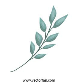 branch with leafs decorative icon