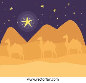 desert night with camels landscape scene icon
