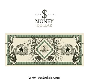 dollar bill  isolated design