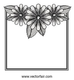 floral frame square decoration isolated