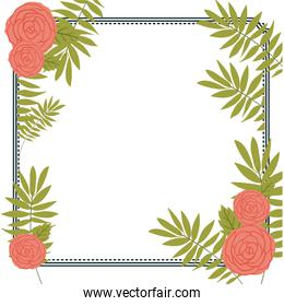 Isolated flowers and leaves frame design