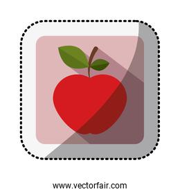 color square with middle shadow sticker with apple fruit