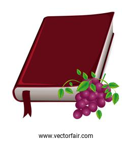 colorful silhouette with holy bible with ribbon and grapes