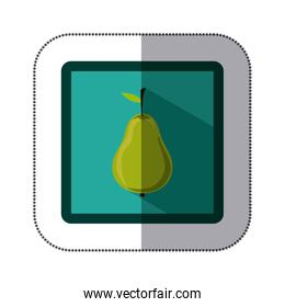 sticker colorful square with pear fruit