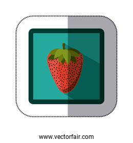 sticker colorful square with strawberry