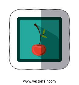 sticker colorful square with cherry fruit