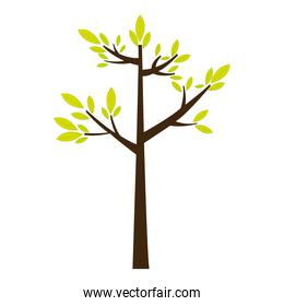 color silhouette with green tree growing