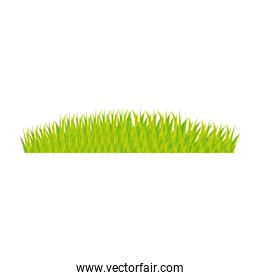 color background with green grass