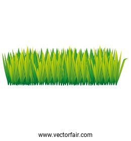green tall grass icon