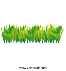 green grass with leaves icon