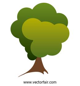 colorful silhouette green tree nature icon