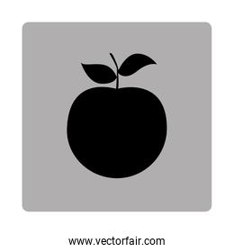 gray square frame with silhouette apple fruit