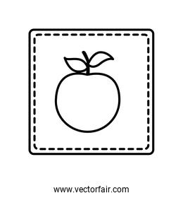 monochrome contour square and dotted line with apple fruit icon