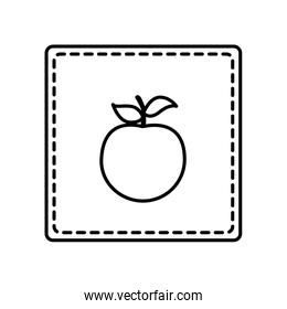 monochrome contour square and dotted line with apple fruit