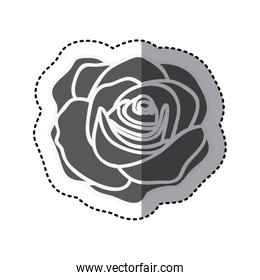 contour rose with oval petals and leaves icon