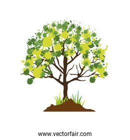 colorful silhouette with leafy tree