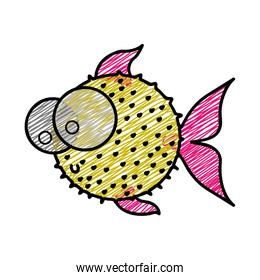 color pencil drawing of blowfish with big eyes