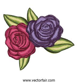 realistic flower red rose and purple rose with leaves