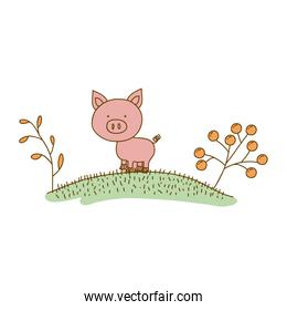 watercolor hand drawn silhouette of pig in hill with plants