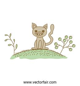 watercolor hand drawn silhouette of cat in hill with plants
