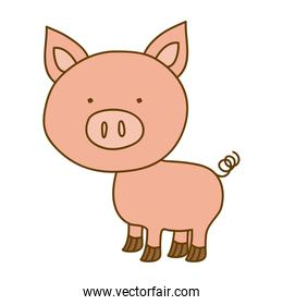 light colored hand drawn silhouette of pig