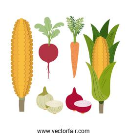 white background with colorful set of vegetables