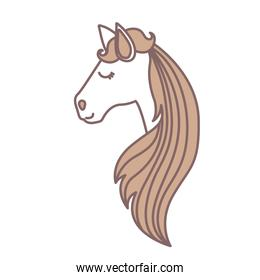 light colors of face side view of female horse with long striped mane
