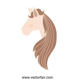 light colors of faceless side view of female horse with long striped mane
