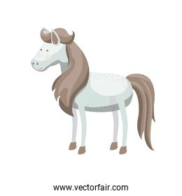 light colors of white horse with freckles and mane and tail brown