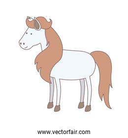 light colors of white horse with mane and tail brown