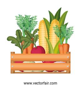 colorful silhouette of wooden box with vegetables