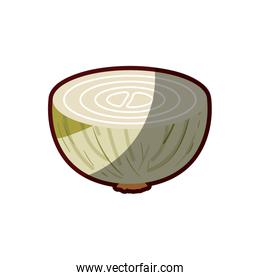 light colors of middle onion in closeup with thick contour