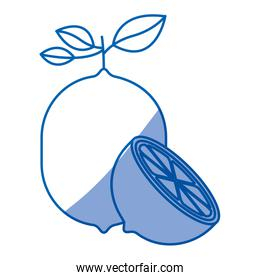 blue shading silhouette of lemon fruit with stem and leaves and half cut lemon