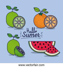 colorful poster of hello summer with citrus fruits and watermelon