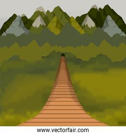 colorful background of outside suspension bridge without railing and forest scenary