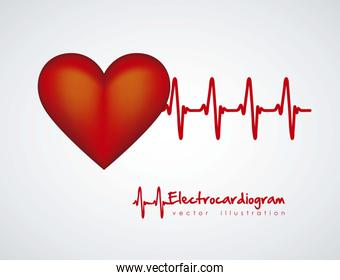 Illustration of heart with heartbeat electrocardiogram vector