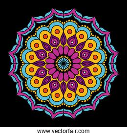 black background with colorful flower mandala vintage decorative ornament