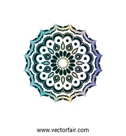 green on transparency and colorful brilliant flower mandala vintage decorative ornament