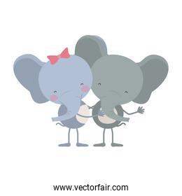 colorful caricature with couple of elephants embraced