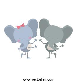 colorful caricature with couple of elephants dancing