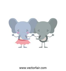 colorful caricature with couple of elephants holding hands