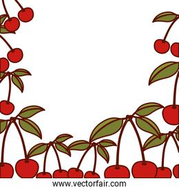 colorful background of cherries fruits